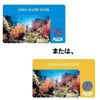 PADI オープンウォーター Cカード取得【通常コース】【送料無料】【02P16Apr19】