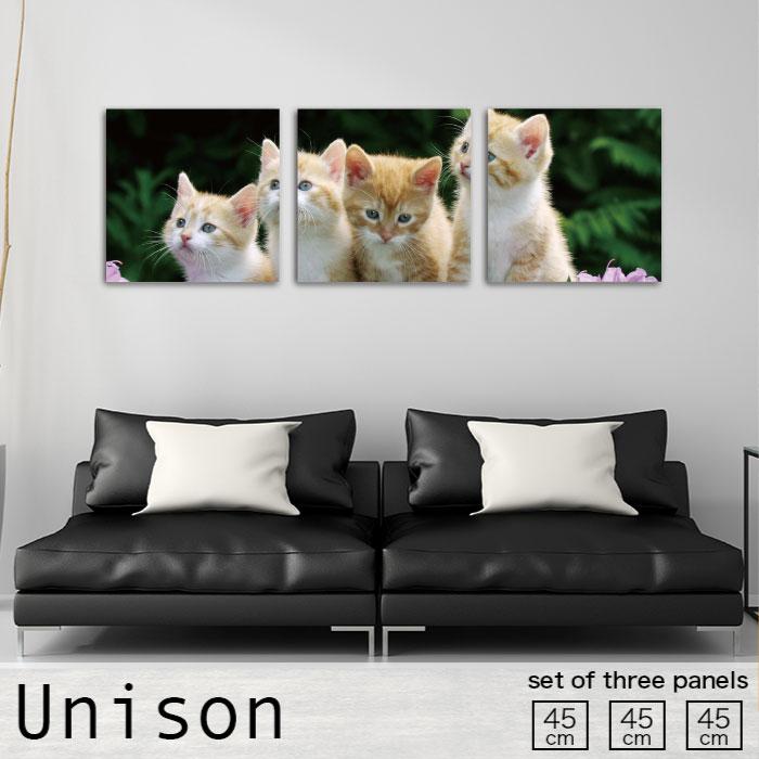 ファブリックパネル 北欧 猫 子猫 動物 かわいい ペット 集合 自然 癒やし 生地 モダン お洒落 3連 アートパネル セット 作る 壁掛け インテリア 絵 人気