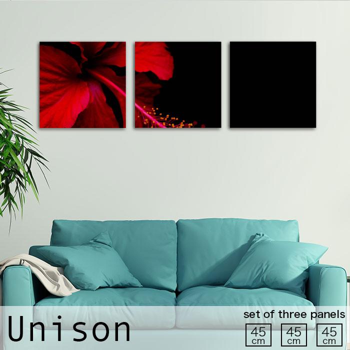 ファブリックパネル Unison Mサイズ かっこいい シンプル ハイビスカス 赤 黒 花 植物 一輪 北欧 生地 オシャレ