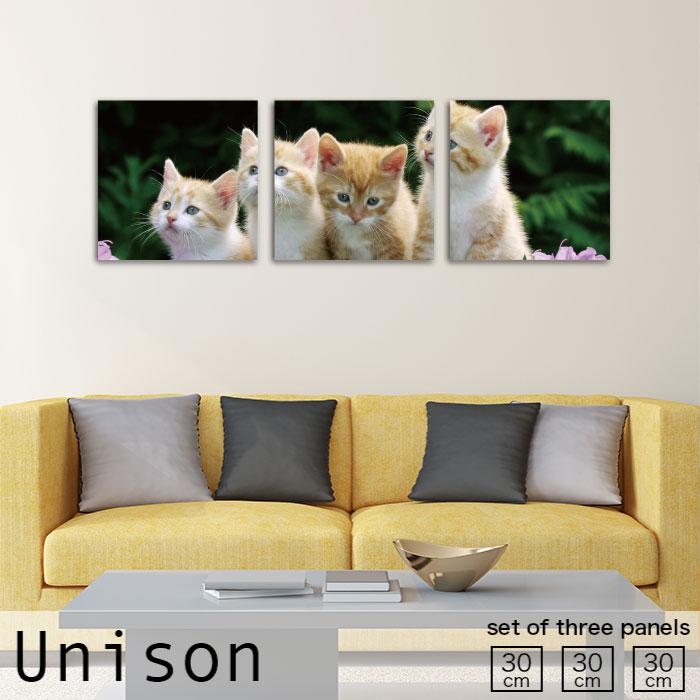 アートパネル 北欧 猫 子猫 動物 かわいい ペット 集合 自然 癒やし 生地 モダン お洒落 3連 ファブリックパネル セット 作る 壁掛け インテリア 絵 人気