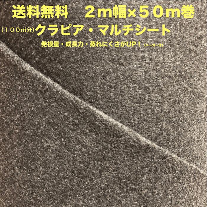 クラピア専用マルチシート (100m2) 2m幅50m巻 吸水性 透水性アップ 病気になりにくい