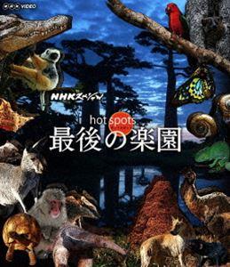 NHKスペシャル ホットスポット 最後の楽園 BOX オリジナル Blu-ray 4年保証