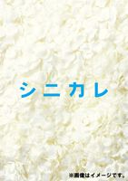 [送料無料] シニカレ完全版 DVD-BOX [DVD]