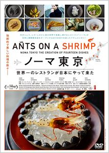 35%OFF ノーマ東京 商舗 DVD