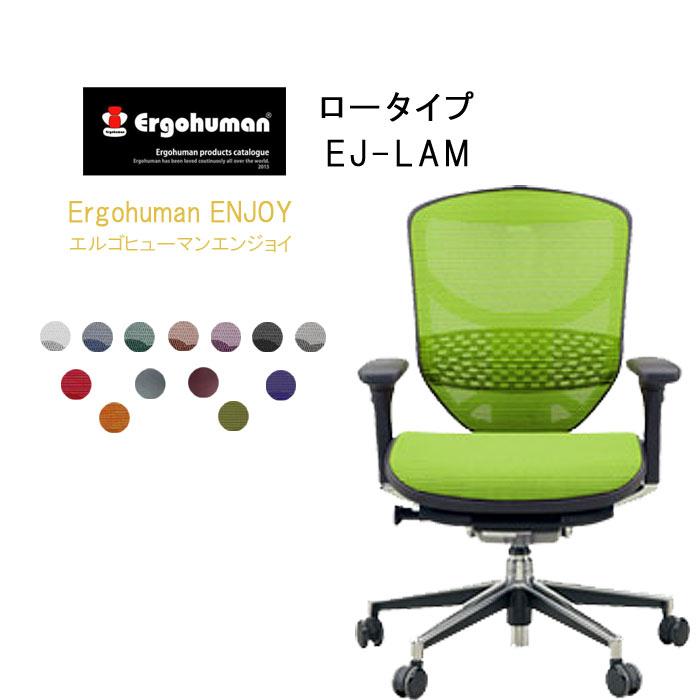 Ergohuman Basic エルゴヒューマンエンジョイ ロータイプ EJ-LAM クーポン除外品【QSM-260】  t001-