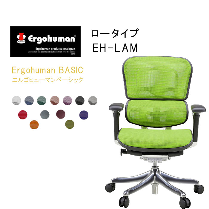 Ergohuman Basic エルゴヒューマンベーシック ロータイプ EH-LAM【肘付・ロータイプ】高機能 メッシュバック チェア  【smtb-TK】【送料無料】