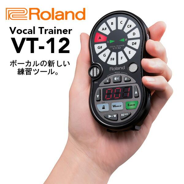 Roland ローランド Vocal Trainer VT-12-BK 【送料無料】