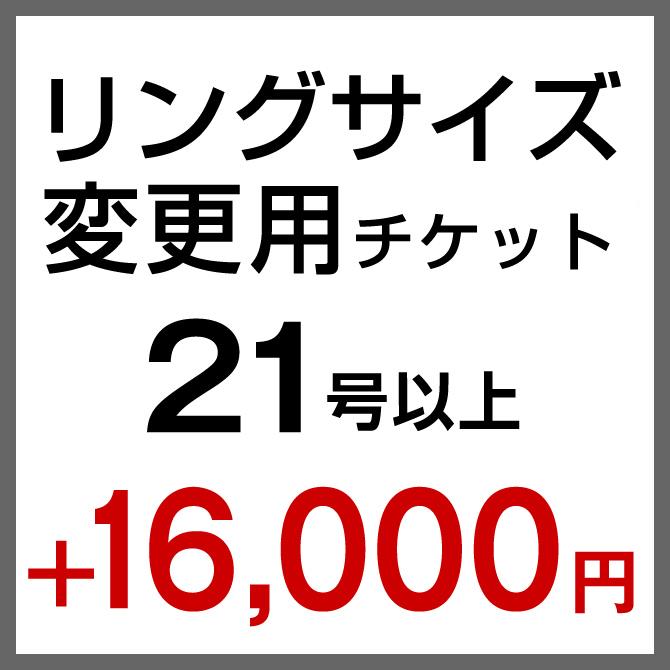 サイズ変更21号以上+16,000円【まとめて購入専用】