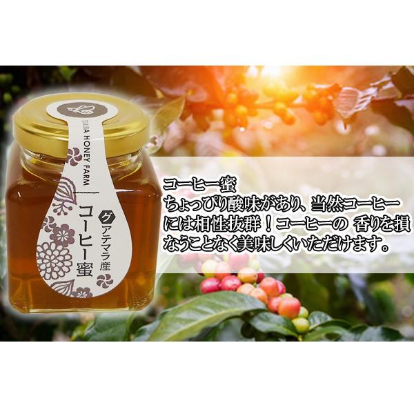 グアテマラ産 コーヒーの花から採集 コクがあり まろやかな風味のはちみつです 山田はちみつ グアテマラ産コーヒー蜜 海外限定 中古 100g ハチミツ T8 TY-J-K はち蜜 通販 蜂蜜