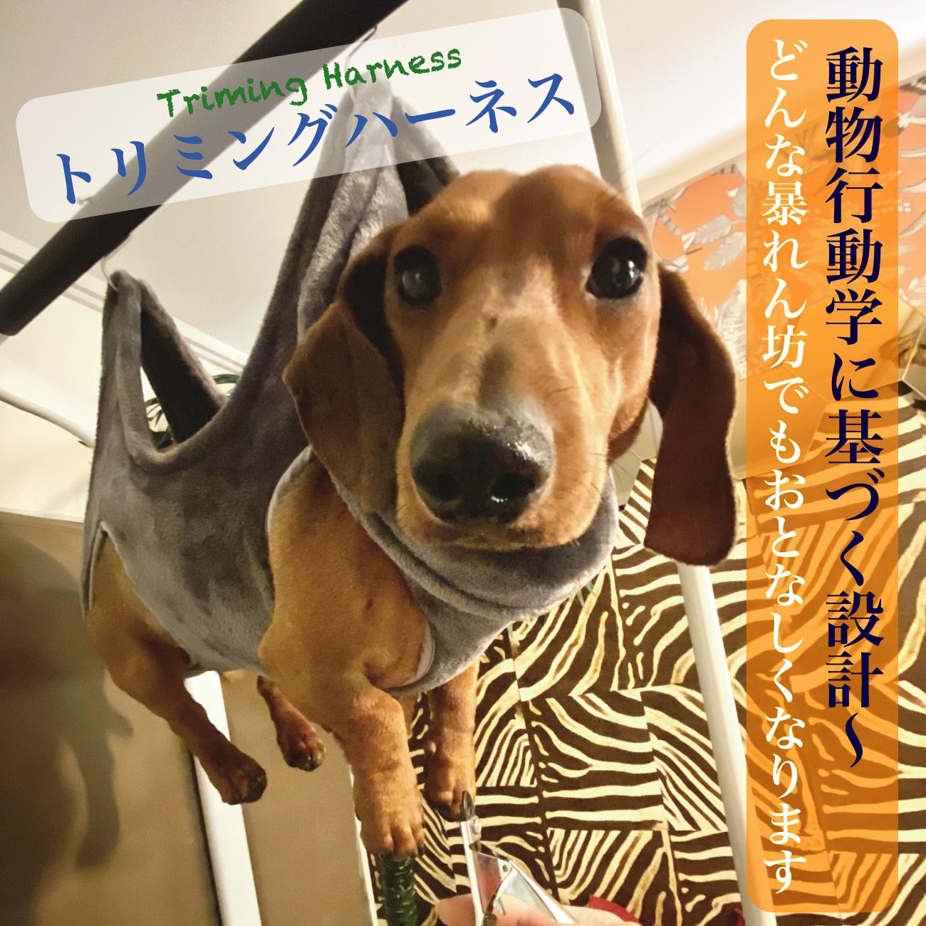 犬猫の行動医学から生まれたトリミングハーネス~どんな暴れん坊でもおとなしくなります 犬 爪切りトリミング 吊り下げ ハーネス ハンモック ペット用品 耳掃除 歯磨き 暴れ防止 猫 万能ネット 補助 黒 ブラック