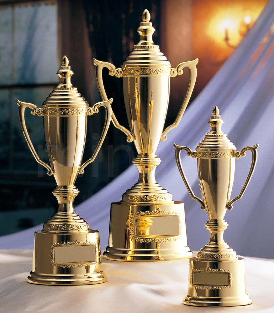 優勝カップ★AG9701-Cサイズ(高さ25cm 口径5cm 重さ770g)【送料無料】【激安】【化粧箱入り】【文字彫刻代無料】 南九州トロフィー