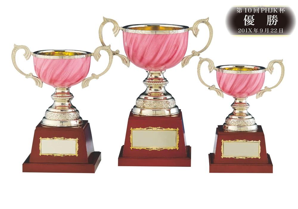 優勝カップ★RC8404-Cサイズ(高さ22cm 口径10cm 重さ800g)【送料無料】【激安】【化粧箱入り】【文字彫刻代無料】 南九州トロフィー