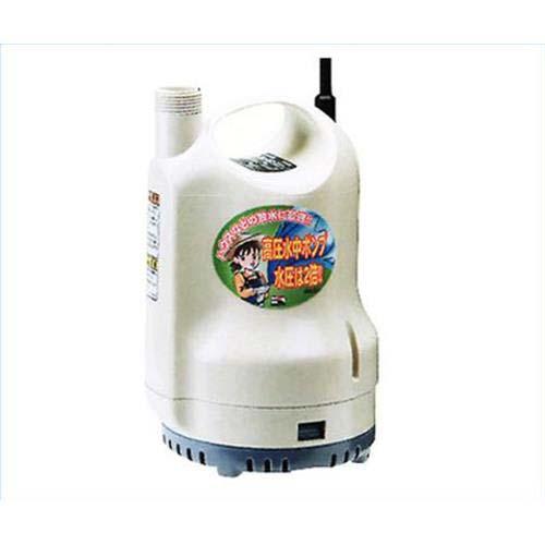 工進 高圧水中ポンプ(清水・循環用) SM型 (口径25Φ/100V)