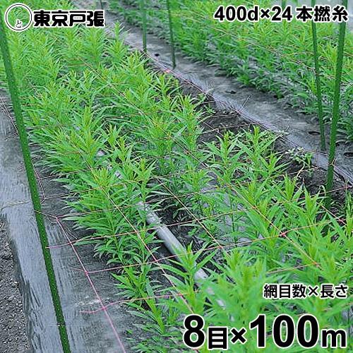[最大1000円OFFクーポン] フラワーネット 400d×24本・撚糸 8目×長さ100m