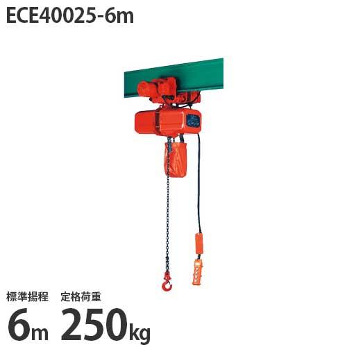 ニッチ 電動横行式 電気チェーンブロック(電動クレーン用) 4点押ボタン式 三相200V ECE40025-6m (250kg/標準揚程6m/操作電圧24V)