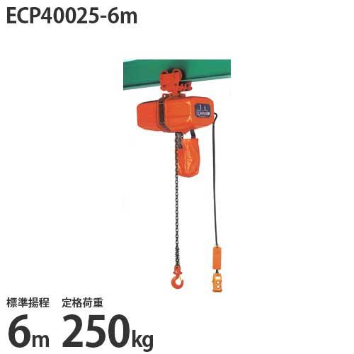 ニッチ 手押横行式 電気チェーンブロック ECP40025-6m (標準揚程6m/三相200V/定格荷重250kg)