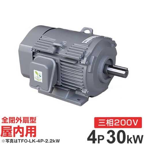 日立産機 三相モーター TFO-LKK-4P-30kW 200V ザ・モートルNeo100 Premium (40馬力/4極/全閉外扇・屋内型)