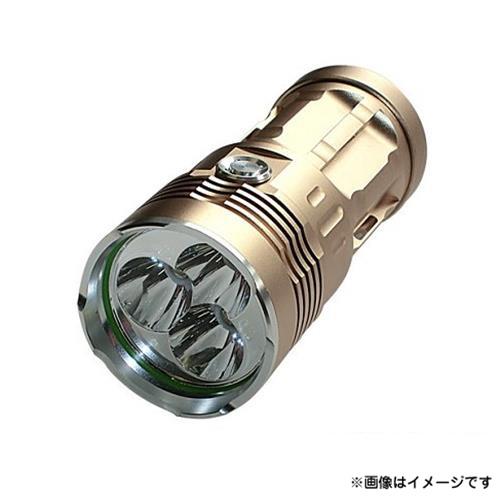 [最大1000円OFFクーポン] アイガー 10WハイパワーLEDライト EH2000 [アイガーツール LED ハンドライト 強力]