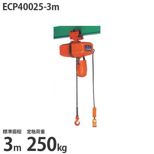 ニッチ 手押横行式 電気チェーンブロック ECP40025-3m (標準揚程3m/三相200V/定格荷重250kg)