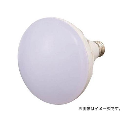 TRUSCO LED投光器用 20W LED球 RTL20W [r20][s9-910]