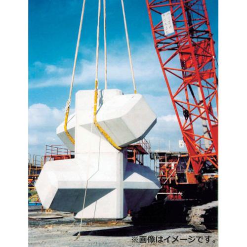 大洋 インカ ヘビーラウンドスリング 16t×1.0m HRS160X1 [r20][s9-920]