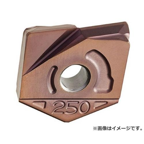 日立ツール カッタ用チップ ZCFW300-R2.0 BH250 ZCFW300R2.0 ×2個セット (BH250) [r22][s9-839]
