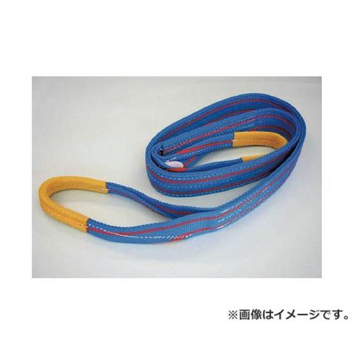 TESAC ブルースリング(JIS3等級・両端アイ形) 3E100X10 [r20][s9-910]