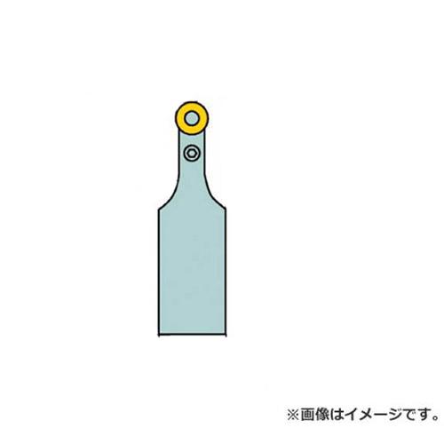 サンドビック T-Max P ポジチップ用シャンクバイト PRDCN3225P12 [r20][s9-910]