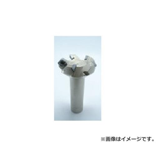 イスカル X ミーリングカッター F45STD80 [r20][s9-930]