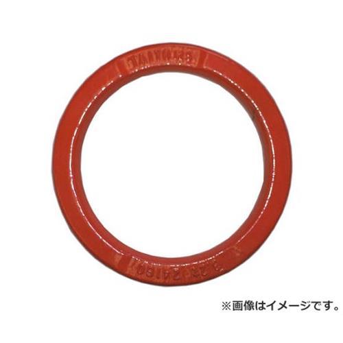 大洋 ハイパーリング 5t 30×200 HLK5T [r20][s9-910]
