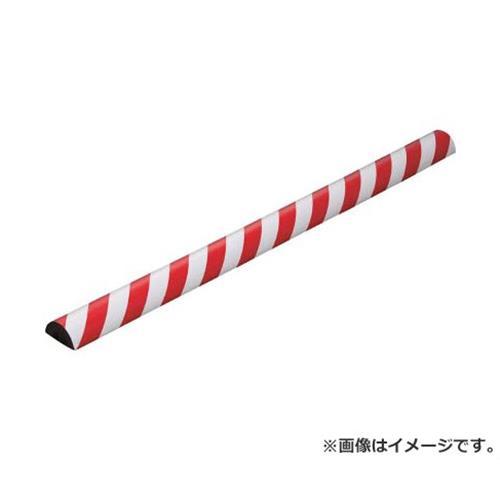 IWATA バンパープロ BP25 (1m) BP25L1 [r20][s9-910]