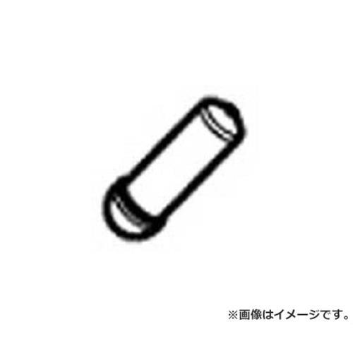 タンガロイ TAC工具部品 SLPI2 ×10個セット [r20][s9-910]