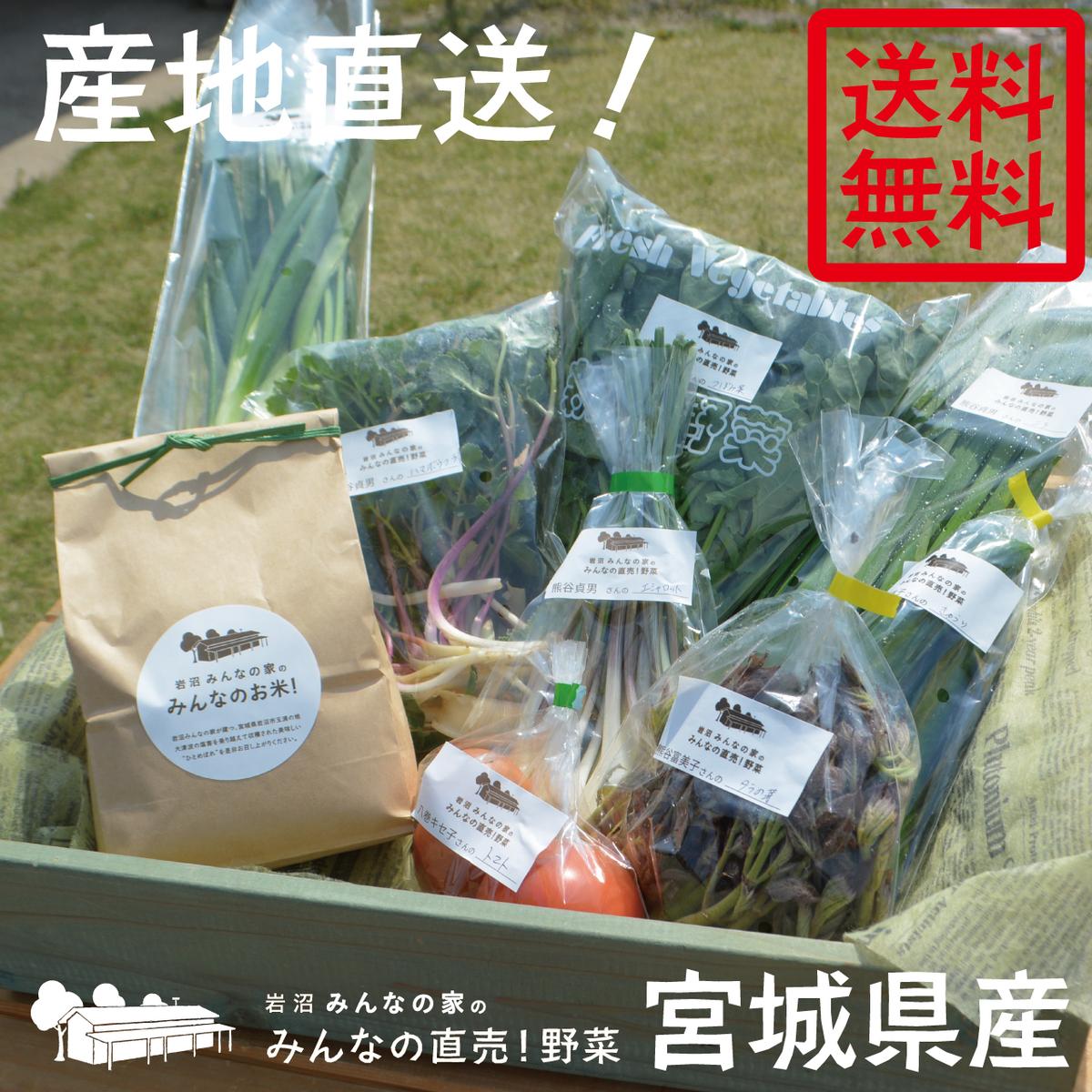宮城県岩沼市の玉浦地区で育った みんなのお米 1kg ひとめぼれ と みんなの直売 直売野菜7~8種 お米1kg 野菜詰め合わせセット の新鮮野菜詰め合わせセットをお届けします 流行 メーカー直売 岩沼みんなの家のお米