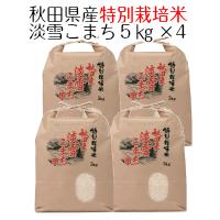 お米 白米 秋田県産 特別栽培米 淡雪こまち 20kg( 5kg×4 ) 平成30年産 送料無料(北海道・沖縄は除く)