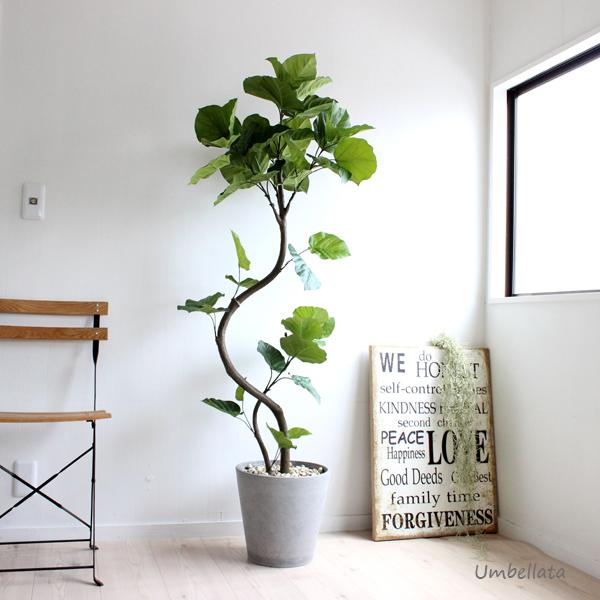一番の ウンベラータ 155cm 造花 観葉植物 フェイクグリーン 大型 送料無料, 2021人気新作 22c8860f