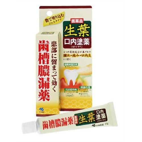 【第3類医薬品】生葉口内塗薬 [20g] ×10個セット
