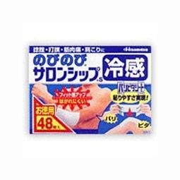 【第3類医薬品】のびのびサロンシップ 24枚×2P ×10個セット