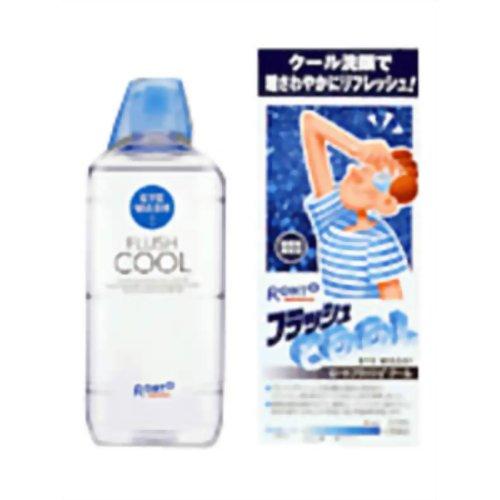 【第3類医薬品】ロートジーフラッシュクール [500ml] ×10個セット