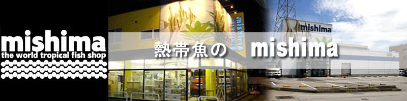 熱帯魚のmishima 楽天市場店:ディスカス・フラワーホーンなどの熱帯魚とアクリル水槽の通販サイトです!