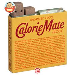 【送料無料】【2ケースセット】大塚製薬 カロリーメイト ブロック チョコレート味1箱(4本入)×30箱入×(2ケース) ※北海道・沖縄は別途送料が必要。