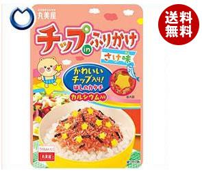 送料無料 丸美屋 チップinふりかけ さけ味 24g×10袋入 ※北海道・沖縄・離島は別途送料が必要。