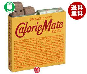 【送料無料】【2ケースセット ブロック】大塚製薬 カロリーメイト ブロック チョコレート味1箱(4本入)×30箱入×(2ケース) ※北海道・沖縄・離島は別途送料が必要。, 世田谷区:fc8d37ed --- officewill.xsrv.jp