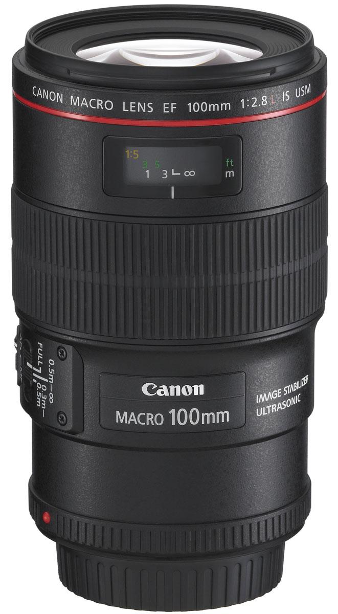 Canon EF100mm F2.8Lマクロ IS USM 1:1等倍マクロレンズ『1~2営業日後の発送』 [02P05Nov16]【コンビニ受取対応商品】