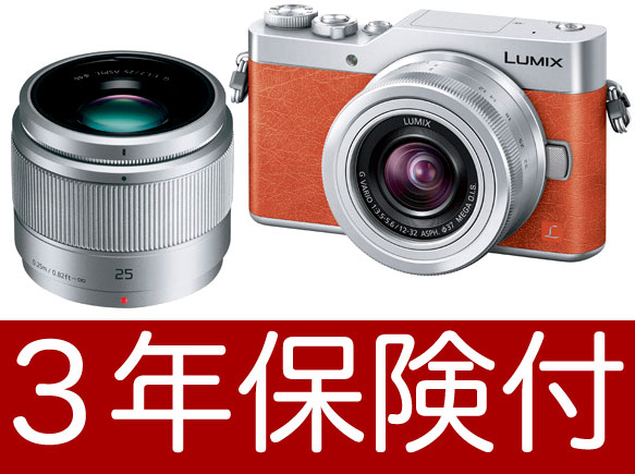 """Tilt-type monitor that Panasonic LUMIX GF9W orange double lens kit is going to release it on January 19, 2017"""", and """"it is available for 4K selfie [with a liquid crystalline protection film] and [space perception AF] [Leopold Monod chrome]-based mirror r"""