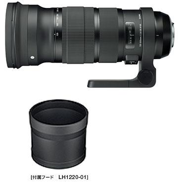 SIGMA 120-300mm F2.8 DG OS HSM『3~4営業日後の発送』マクロレンズ並みに拡大可能な大口径F2.8 300mm手ブレ補正機能付き望遠ズームレンズ[fs04gm][02P05Nov16]