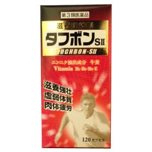 【第3類医薬品】タフボンSII 120カプセル 2個 田村薬品工業