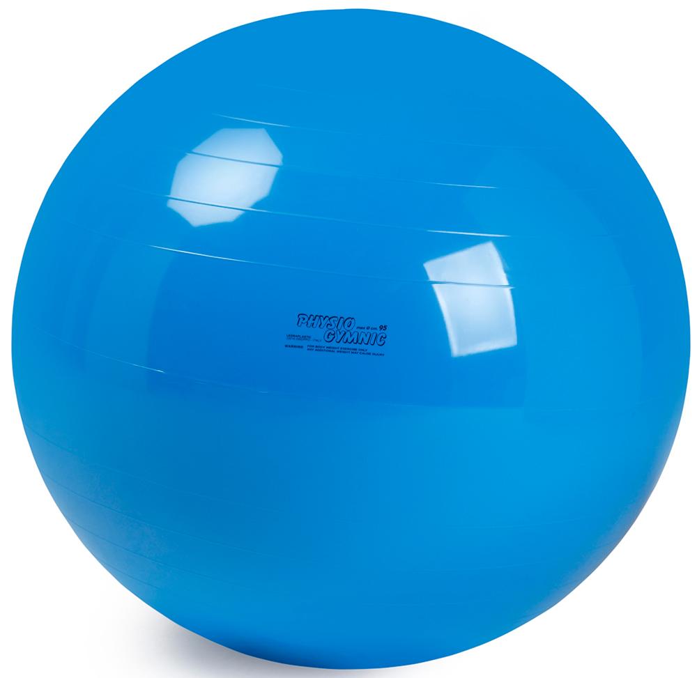 ギムニクボール95(バランスボール)ブルー