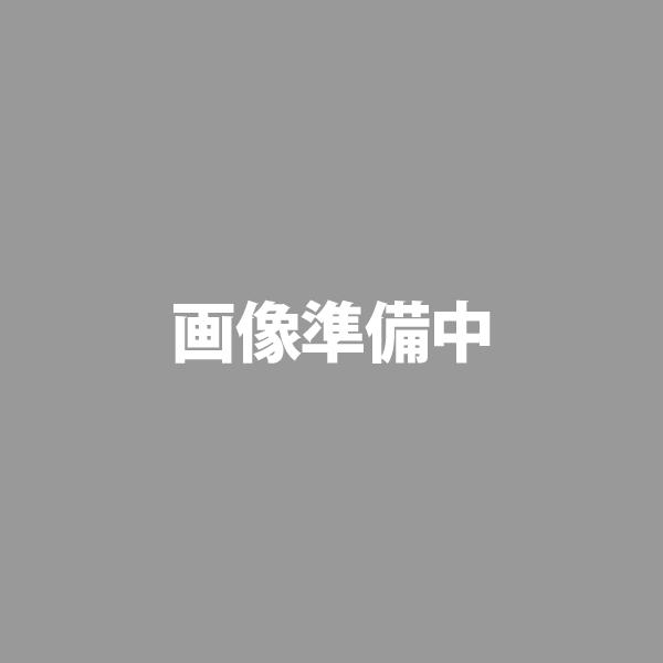 リンプロジェクト レザーウォレット GREEN No.5010(052) 送料無料