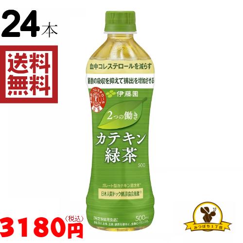 伊藤園 おーいお茶 緑茶 冷凍兼用ボトル 特価 トクホ 現品 2つの働き カテキン緑茶 新色追加 500mlx24本