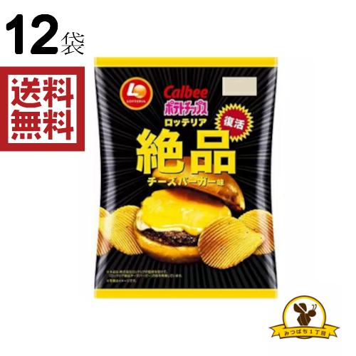 カルビー 迅速な対応で商品をお届け致します ポテトチップス ロッテリア絶品チーズバーガー味 100gx12袋 販路限定品 大規模セール